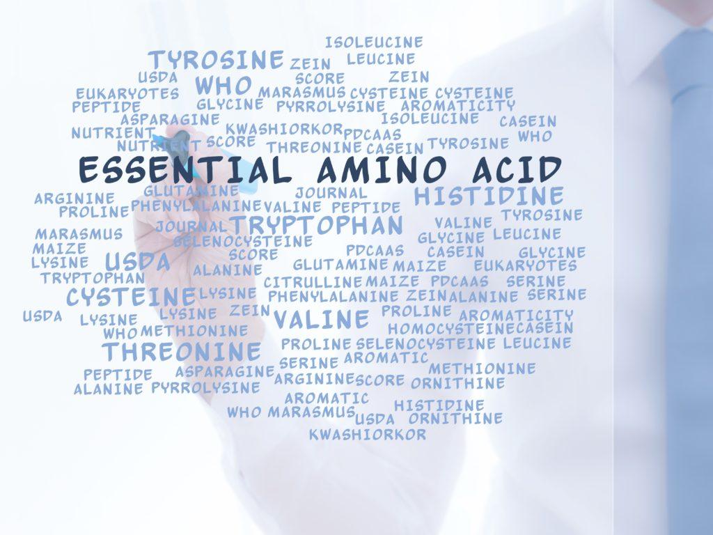 アミノ酸の文字が書かれた画像